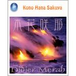 Didier Merah『Kono Hana Sakuya』ブログパーツ