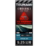 メガ津波が襲う!映画『TSUNAMI』ブログパーツ