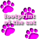 footprint of the cat