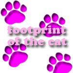 footprint of the cat