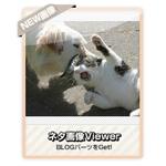 【ネタ画像Viewer】ネタ画像を次々を表示するブログパーツ