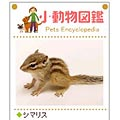 Small Animal Picture Encyclopedia