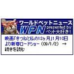 ワールドペットニュース★ニャンコキャスターver.