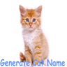 Kitten Cat Name Generator