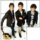 Jonas Brothers Puzzle Game