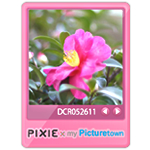 PIXIE×my Picturetown☆カラフルブログパーツ2