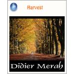 Didier Merah『Harvest』ブログパーツ