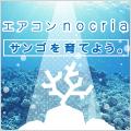 富士通ゼネラル nocria 『サンゴを育てよう』ブログパーツ
